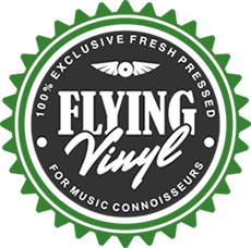 flying vinyl logo